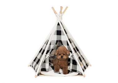 TEEPEE TENT CHECK